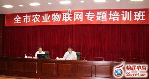 安徽省滁州市举办农业物联网专题培训班