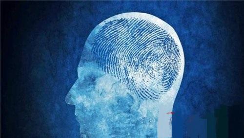 """纽约宾汉姆顿大学研究出""""脑纹""""识别技术"""