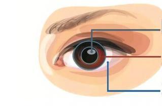 指纹识别与虹膜识别的优劣及应用