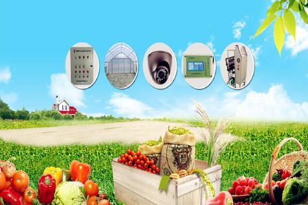 解析:物联网技术在现代农业中的应用